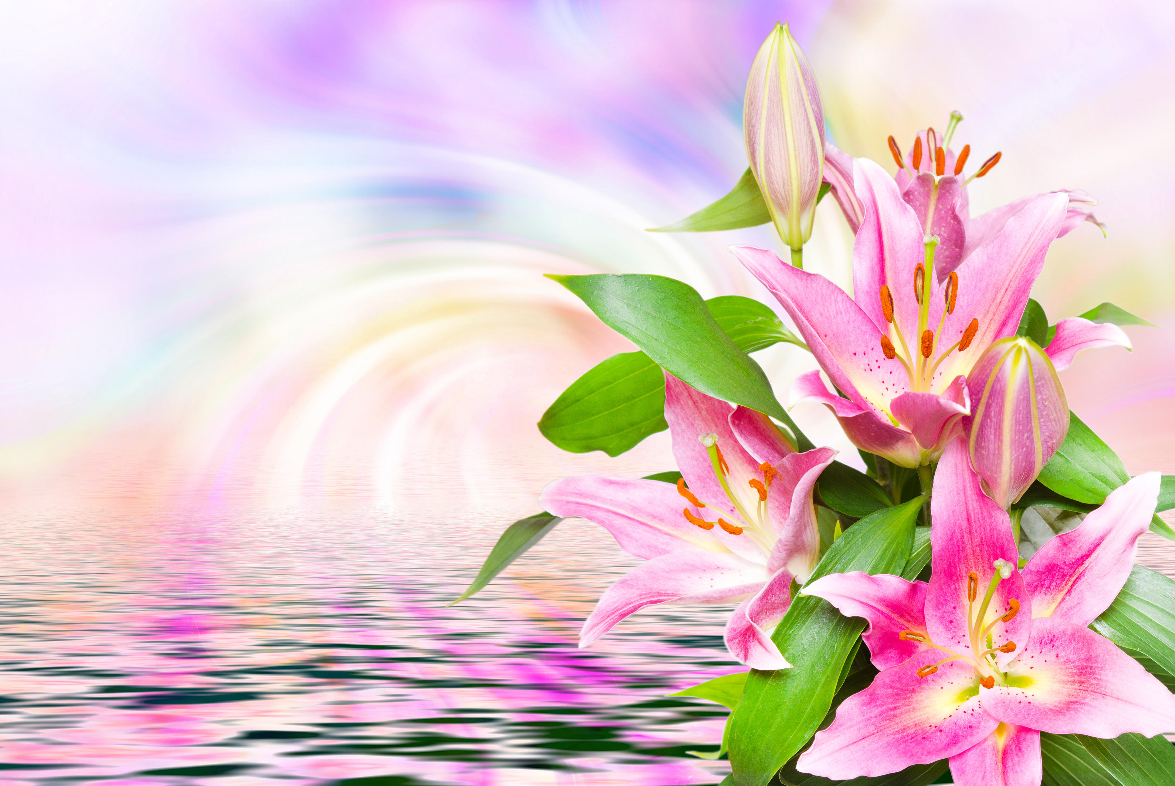Красивые рисованные открытки цветы похожие на лилии с днем учителя