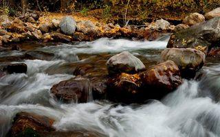 Бесплатные фото осень,листья,река,вода,камни,деревья,валун