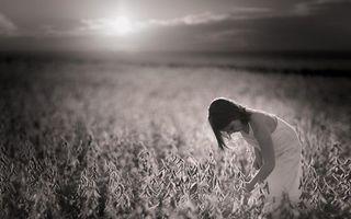 Photo free field, girl, greens