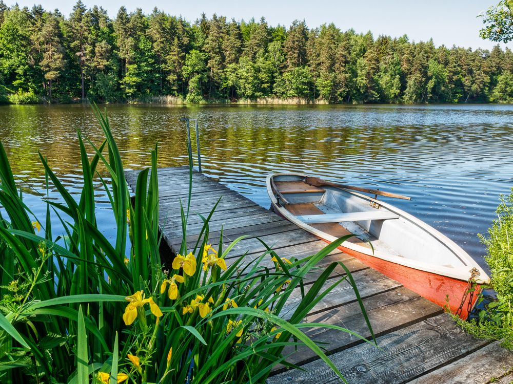 Фото бесплатно река, лодка, мостик, цветы, деревья, пейзаж, пейзажи