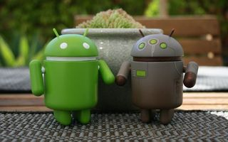 Photo free android, robots, flower bed