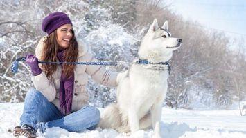 Фото бесплатно собака, лайка, снег