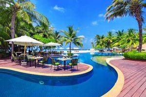 Бесплатные фото тропики,море,курорт,ресторан,бассейн,разное