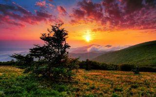 Фото бесплатно закат, солнца, небо