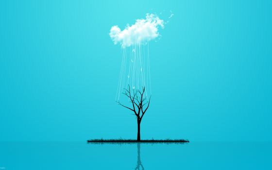 Заставки дерево,облако,стиль,трава,минимализм,дождь