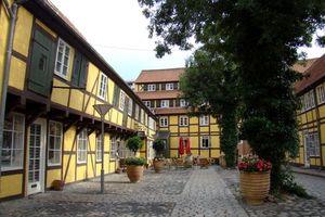 Бесплатные фото дома,улицы,деревья,клумбы,фасад,окна,дорожка