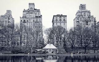 Бесплатные фото фото,черно-белое,дома,высотки,деревья,парк,река