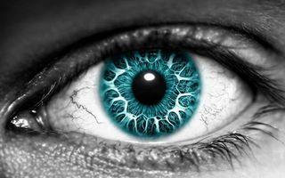 Бесплатные фото глаз,ресницы,зрачок,капилляры,узоры,зеленый,разное