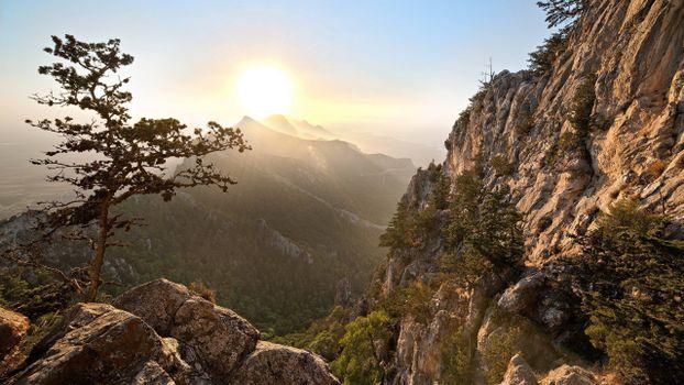 Фото бесплатно скалы, солнце, растительность