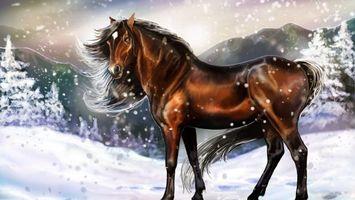 Заставки лошадь, конь, грива, хвост, зима, снег, животные