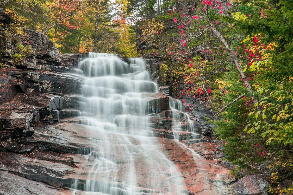 Обои осень, лес, деревья, водопад, скалы, природа на телефон | картинки природа - скачать