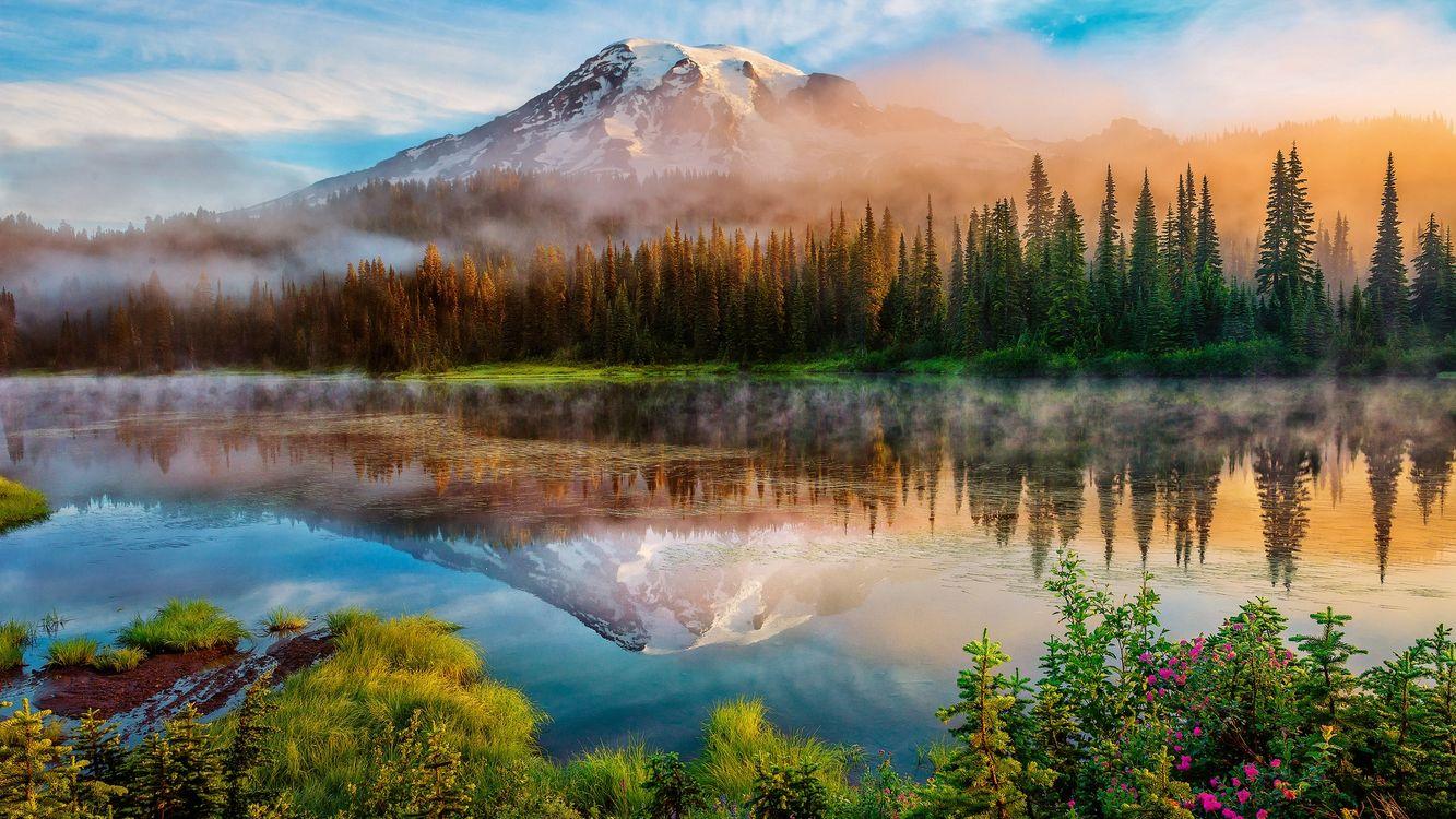 Фото бесплатно река, вода, лес, деревья, горы, снег, туман, природа, природа