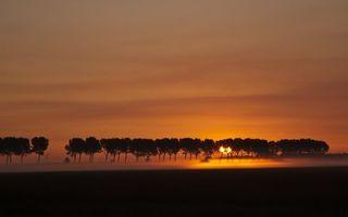 Бесплатные фото туман,деревья,трава,небо,облака,солнце,закат
