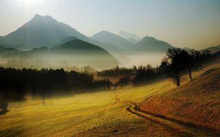 Бесплатные фото горы,лес,тропинка,холмы,дорога,деревья,поляна