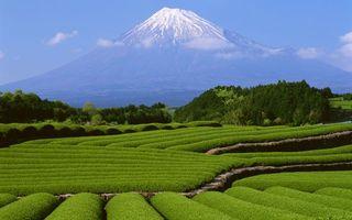 Photo free volcano, field, grass