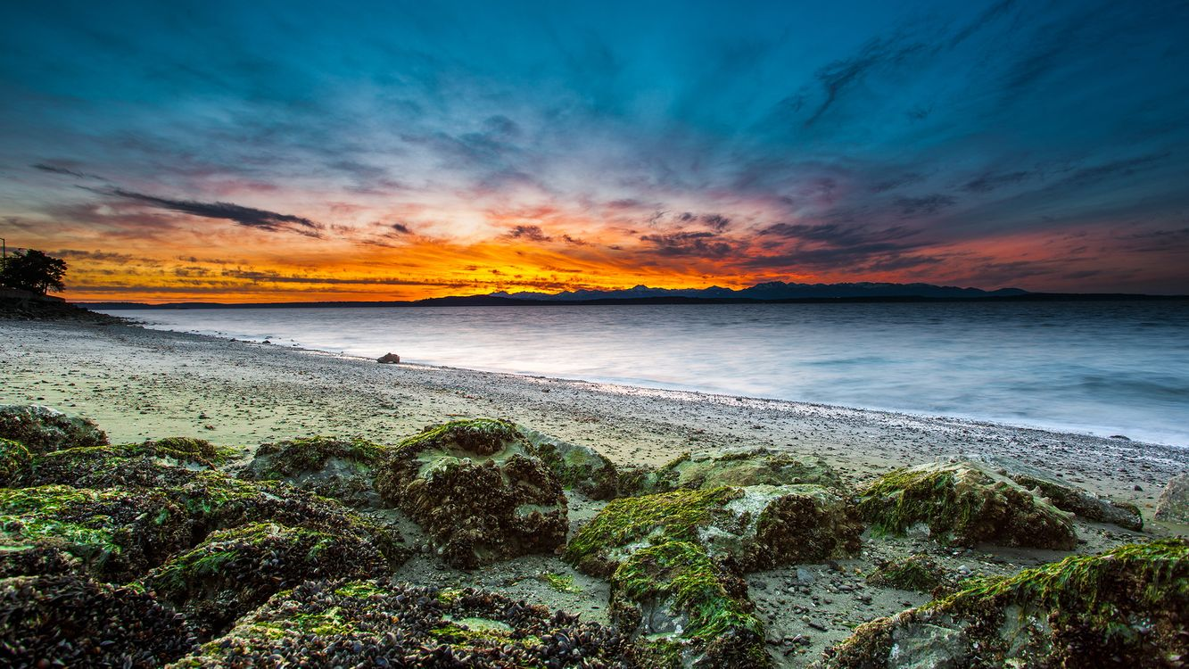 Фото бесплатно берег, море, камни, мох, песок, закат, небо, пейзажи, пейзажи