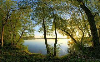 Фото бесплатно берег, трава, деревья