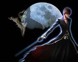 Фото бесплатно блич, луна, аниме