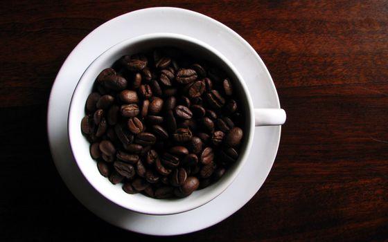 Бесплатные фото кофе,кружка,белая,зерна,красиво,вкусно,напитки