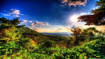 Фото бесплатно небо, облака, листья