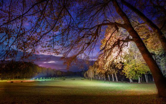 Фото бесплатно ночной, парк, деревья, лес, поле, лужайка, газон, фонарь, освещение, природа, пейзажи