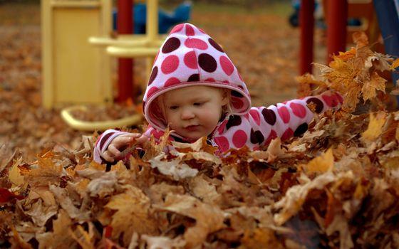 Бесплатные фото осень,ребенок,малыш,играет,листва,желтая,ситуации