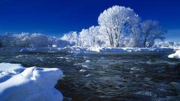 Бесплатные фото река,течение,зима,снег,деревья,иней,природа