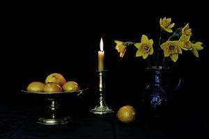 Бесплатные фото свеча,ваза,цветы,лимоны,натюрморт