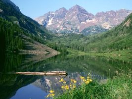 Бесплатные фото вода,горы,лес,зелень,небо,цветы,природа