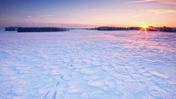 Бесплатные фото зима,снег,сугробы,следы,поле,деревья,солнце