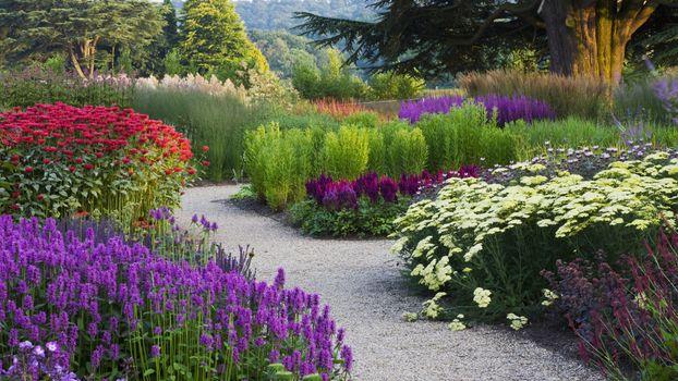 Бесплатные фото разные,дорожка,парк,тропинка,цветы,деревья,сад
