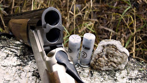 Заставки оружие, двухстволка, патроны