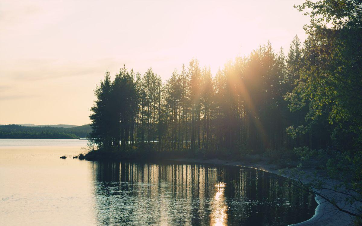Фото бесплатно озеро, вечер, солнце, берег, деревья, лес, вода, пейзажи, пейзажи