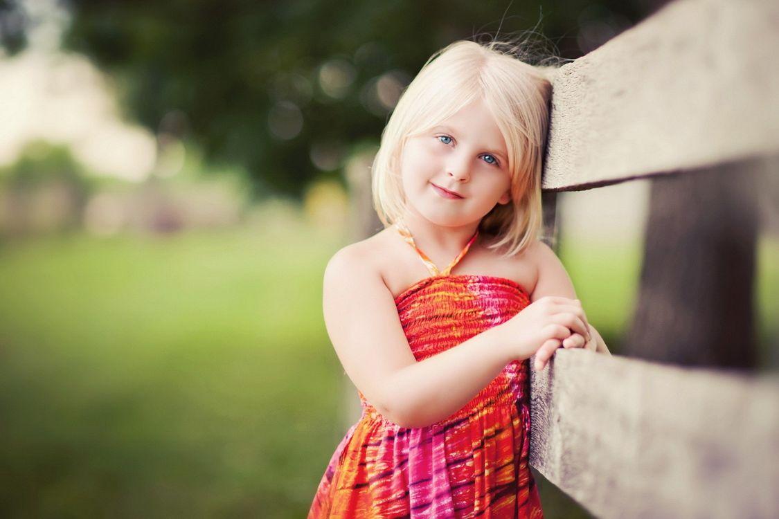 Free photo photo, portrait, fence - to desktop