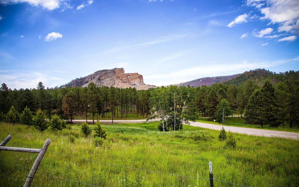 Фото бесплатно гора, лес, дорога - на рабочий стол