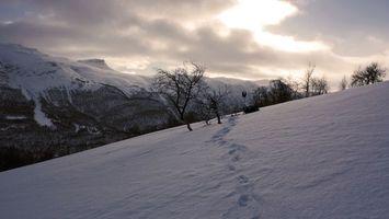 Бесплатные фото горы,человек,дерево,следы,снег,разное
