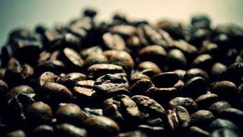 Обои кофе, зерна, ягоды, куча, заставка, фон, фото, напитки