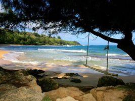 Бесплатные фото море,деревья,вода,песок,небо,облака,лето