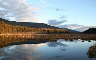 Фото бесплатно трава, вода, камышь, лес, деревья, река, горы, природа