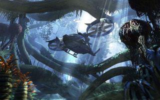 Фото бесплатно вертолет, лес, джунгли