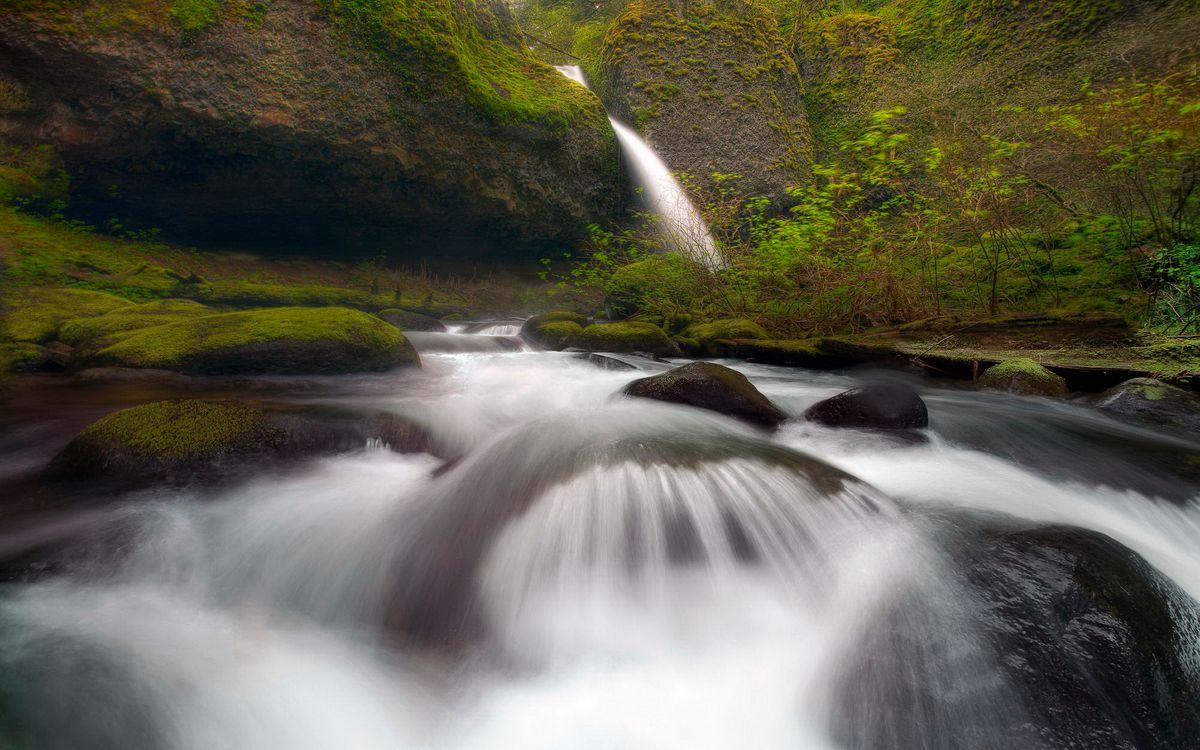 Фото бесплатно вода, река, водопад, горы, лес, деревья, трава, кусты, природа, природа - скачать на рабочий стол