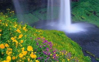 Обои вода, река, водопад, трава, скалы, горы, цветы, природа