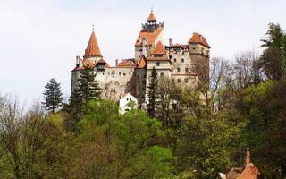 Обои замок, дом, здание, крыша, окна, деревья, участок, сад, осень, город