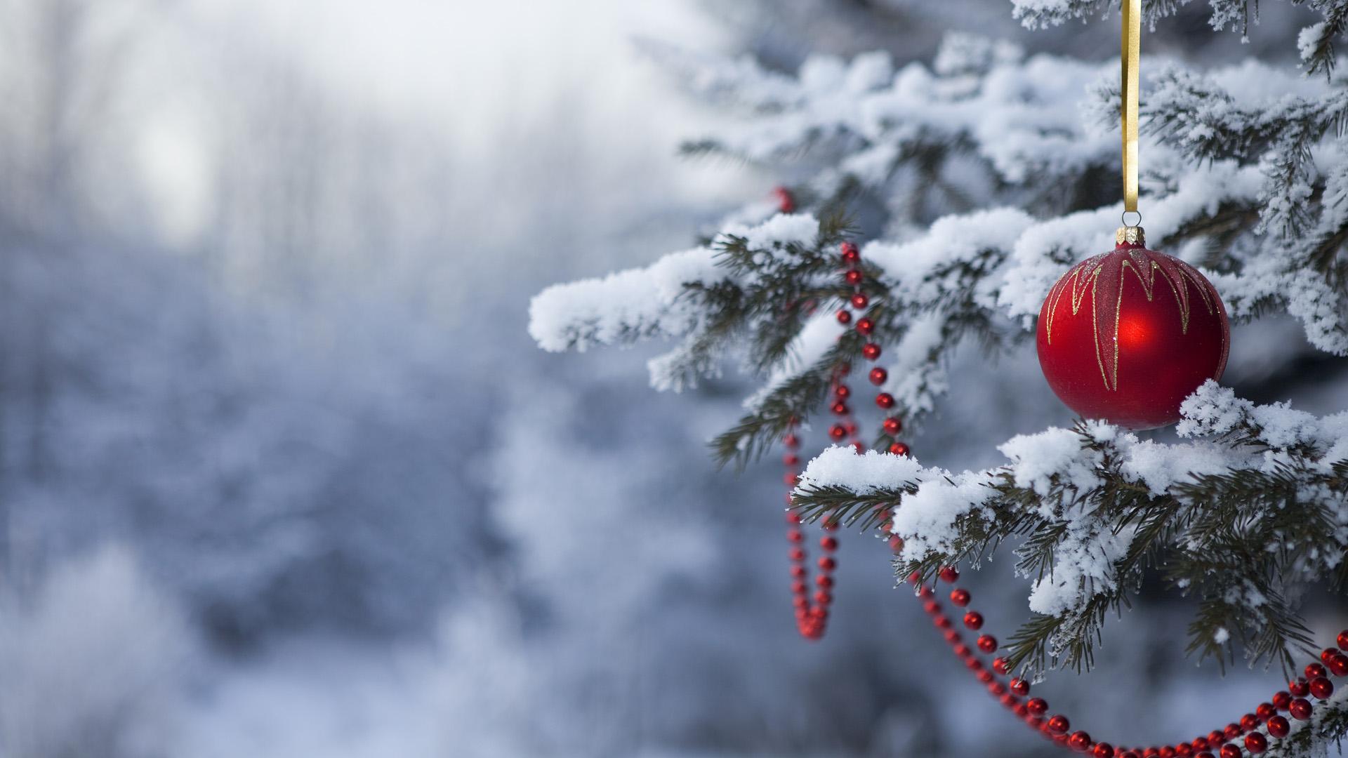Обои новогодняя, игрушка, елка, в снегу