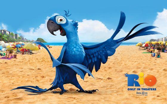 Фото бесплатно рио-де-жанейро, мультфильм, птица