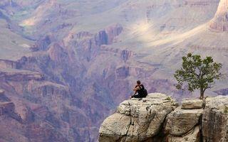 Заставки каньон,скала,камни,дерево,высота,человек,мужчины
