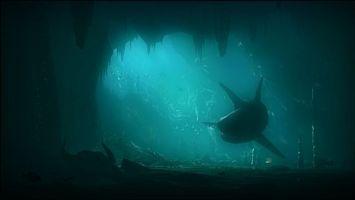 Бесплатные фото подводный,мир,пещера,акула,рыбы,череп,рога
