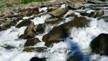 Фото бесплатно природа, капли, камни