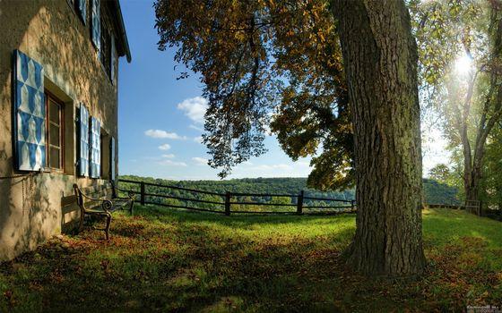 Фото бесплатно дом, дерево, трава