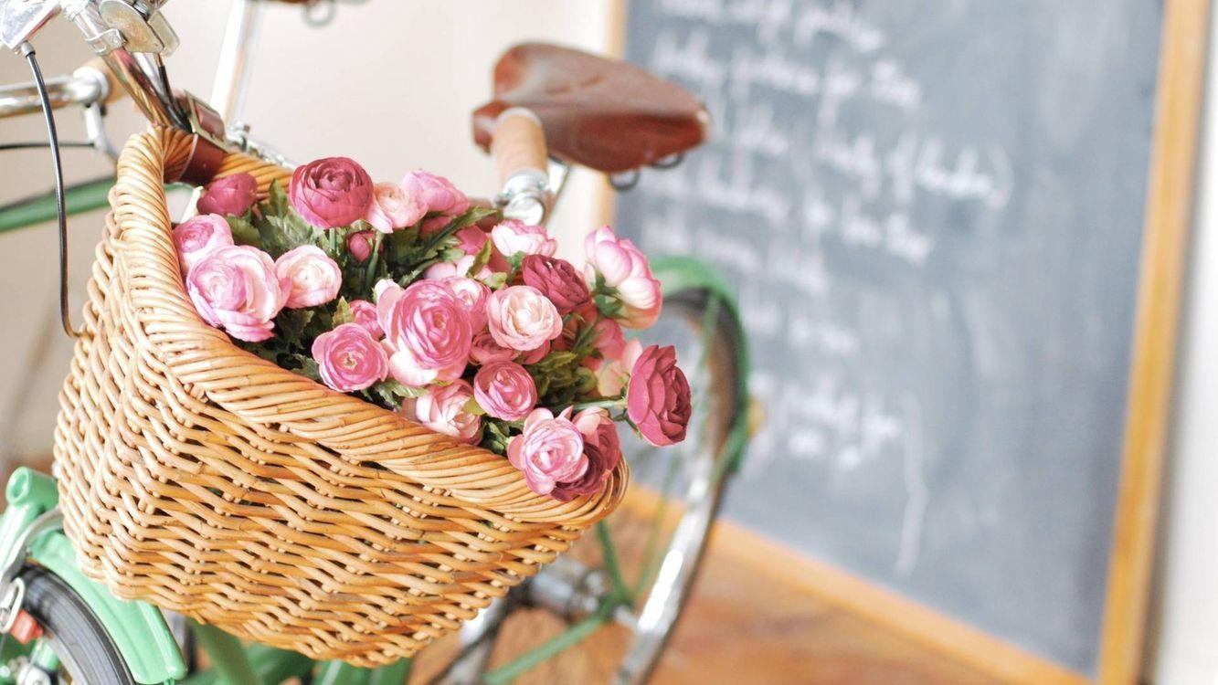 Фото бесплатно корзинка, цветы, велосипед - на рабочий стол